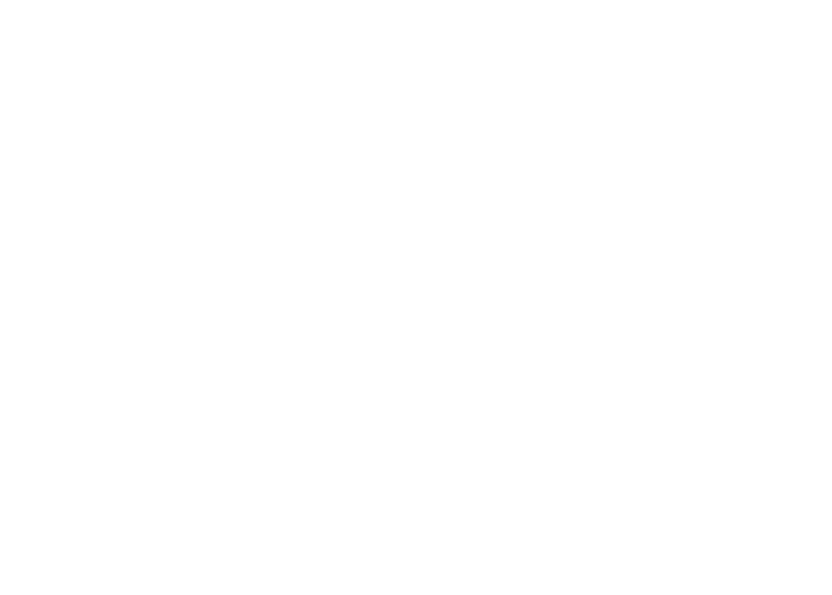 System_Professional.png